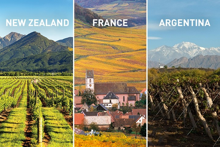 New! Wines from New Zealand, France and Argentina